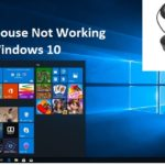 Mouse not working windows 10
