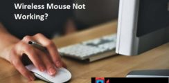 Wireless Mouse not working 2019